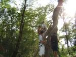 On grimpe dans les arbres