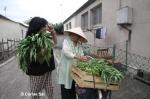 Nina et Mme Thi Nhi, vendeuse de liserons d'eau
